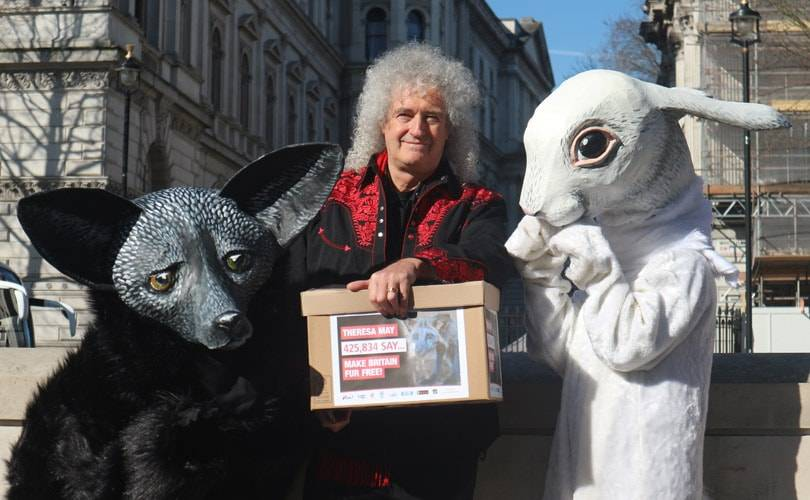 425,000 signatures delivered to No 10 calling for UK Fur-Trade Ban