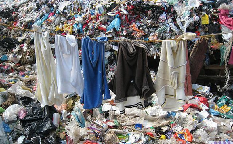 Government called on to help make sustainable clothing more fashionable