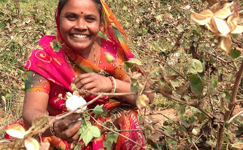 Primark extends sustainable cotton programme
