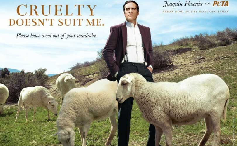 PETA launches campaign against wool industry