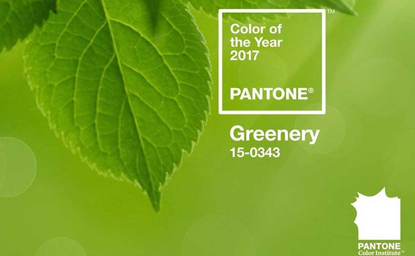 Pantone names Greenery colour of the year