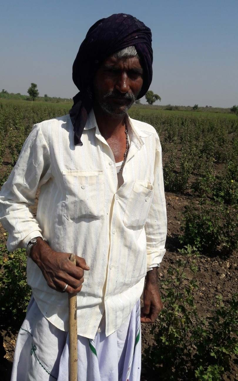 Sustainably farmed cotton five times less damaging