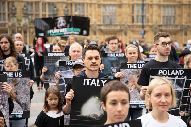 MPs push for UK ban of fur imports during landmark debate