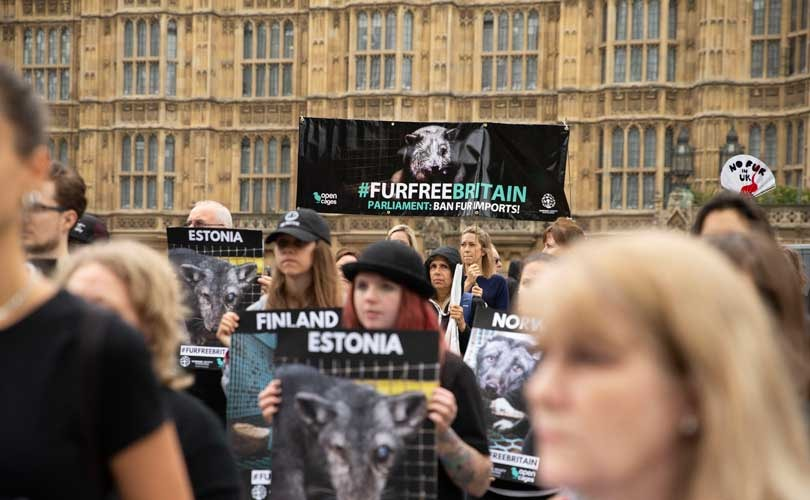 The UK Fur Debate: 'Plainly, fur is immoral, cruel and barbaric'