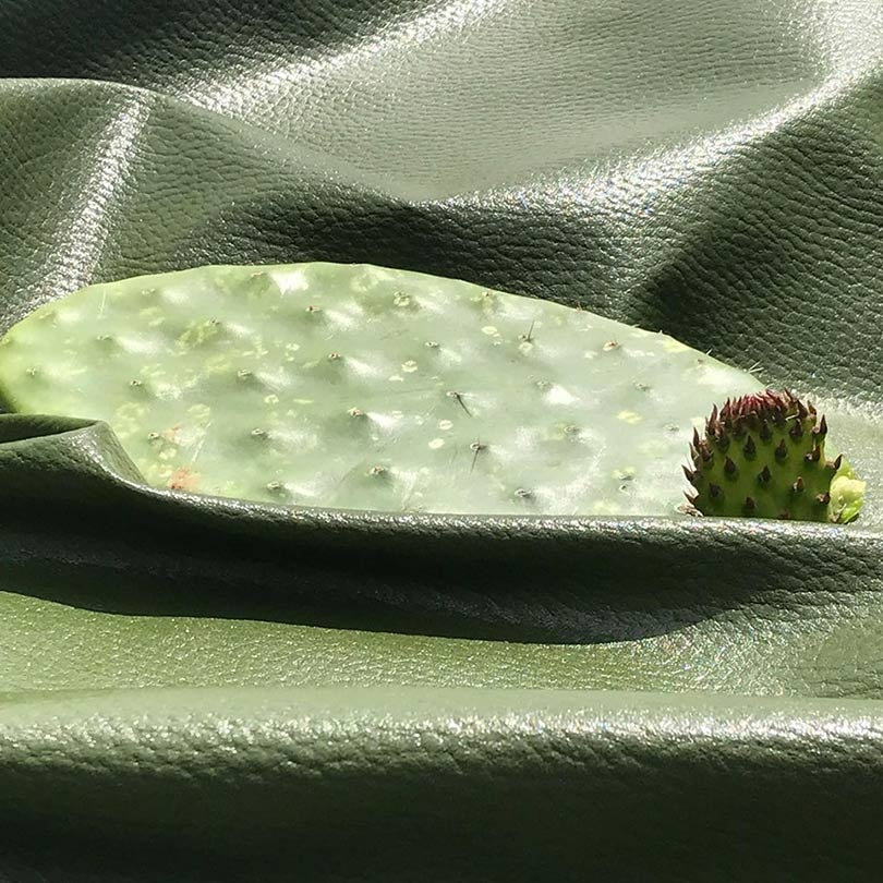 Vegan cactus leather from Mexico: new favorite for luxury at Lineapelle Milan