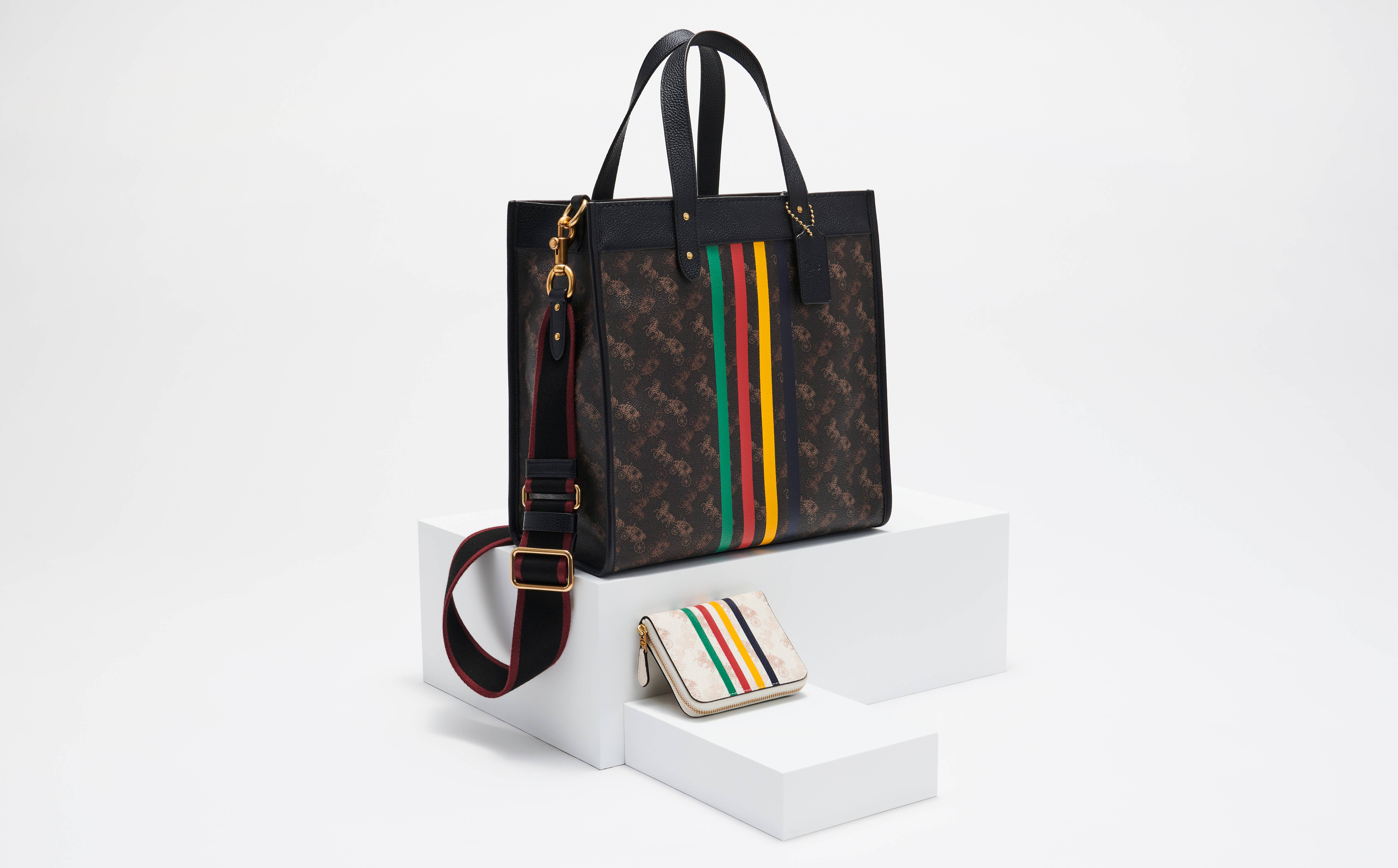 Coach and Hudson's Bay Company link for bag collection